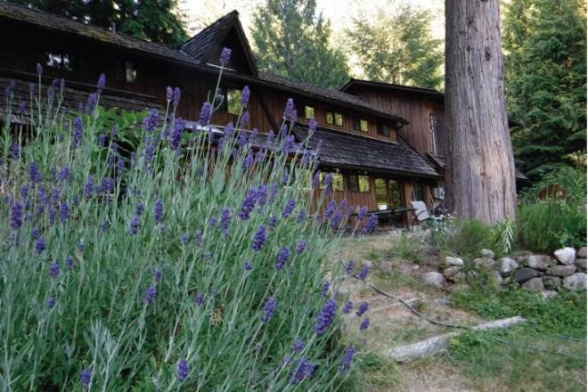 retreat-center-lavender
